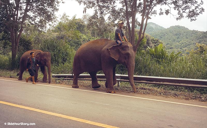 route . Chiang Mai – Samoeng Loop